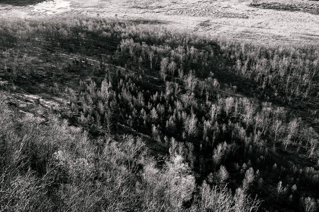 Balteskardvatnet